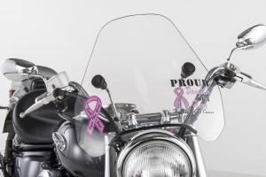 Breast Cancer Custom Front View